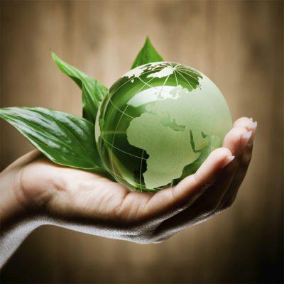 Nantwich In Bloom Environmental Responsibility