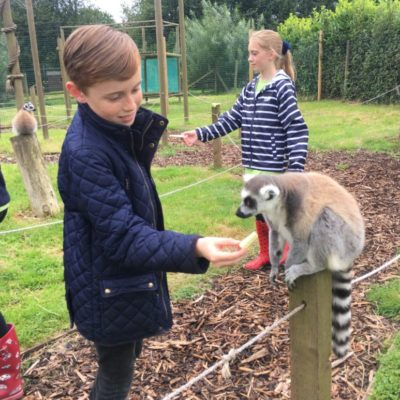 Reaseheath Zoo