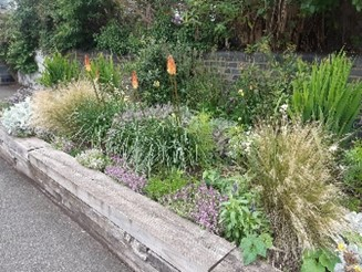 Plant Beds At Railway - Click to open full size image